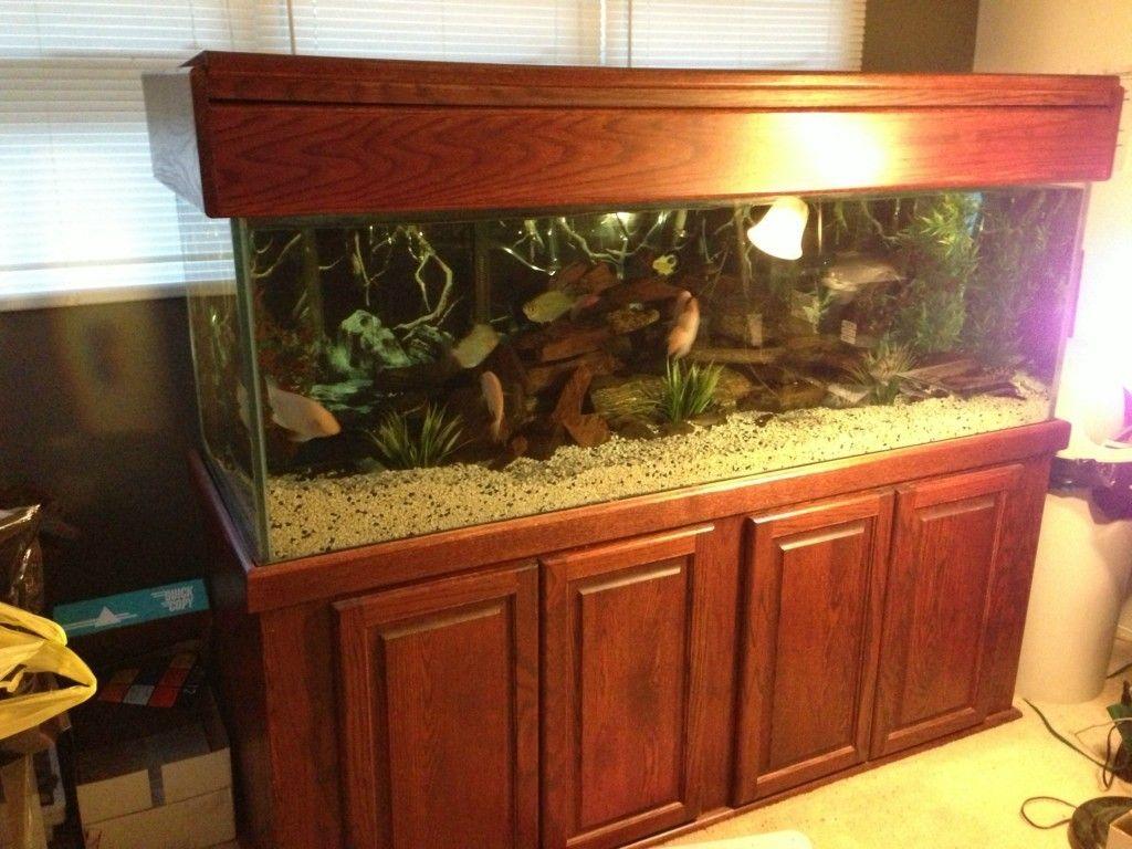 180 Gallon Fish Tank Aquarium with Oak Stand